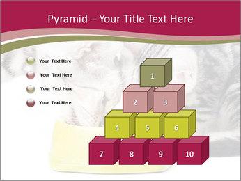 0000076965 PowerPoint Templates - Slide 31