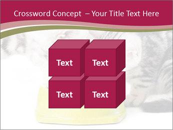 0000076965 PowerPoint Templates - Slide 39