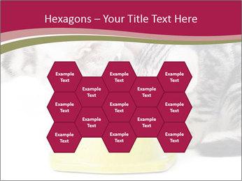 0000076965 PowerPoint Templates - Slide 44