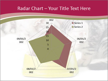 0000076965 PowerPoint Templates - Slide 51