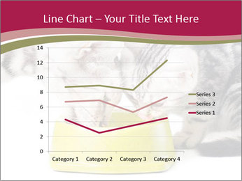 0000076965 PowerPoint Templates - Slide 54
