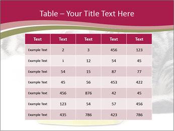 0000076965 PowerPoint Templates - Slide 55