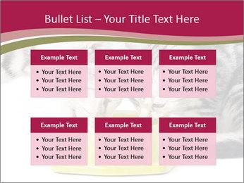 0000076965 PowerPoint Templates - Slide 56