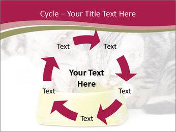 0000076965 PowerPoint Templates - Slide 62