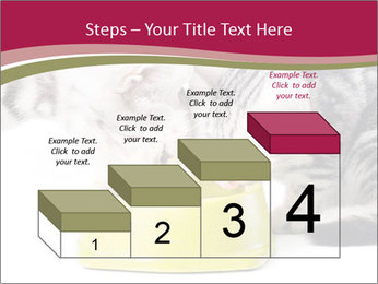 0000076965 PowerPoint Templates - Slide 64