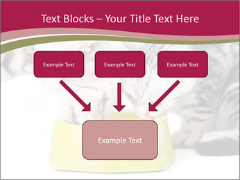 0000076965 PowerPoint Templates - Slide 70