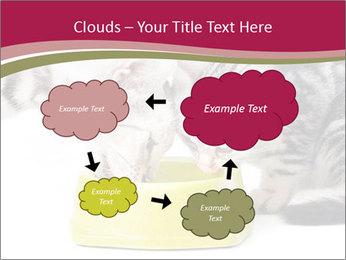 0000076965 PowerPoint Templates - Slide 72