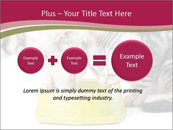 0000076965 PowerPoint Templates - Slide 75