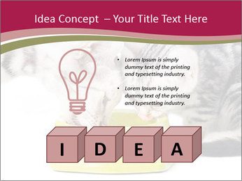 0000076965 PowerPoint Templates - Slide 80