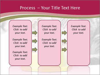 0000076965 PowerPoint Templates - Slide 86