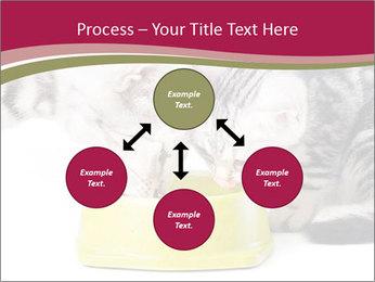 0000076965 PowerPoint Templates - Slide 91