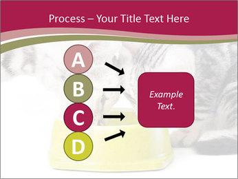 0000076965 PowerPoint Templates - Slide 94