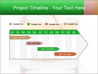 0000076966 PowerPoint Template - Slide 25