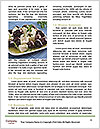 0000076977 Word Templates - Page 4