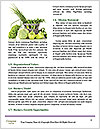 0000076982 Word Templates - Page 4
