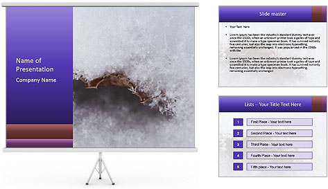 0000076998 PowerPoint Template