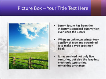 0000076998 PowerPoint Templates - Slide 13
