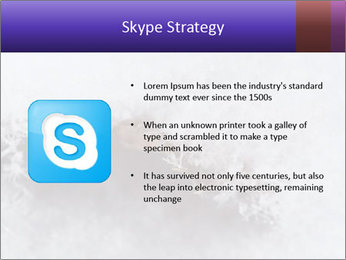 0000076998 PowerPoint Templates - Slide 8