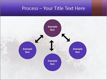 0000076998 PowerPoint Templates - Slide 91