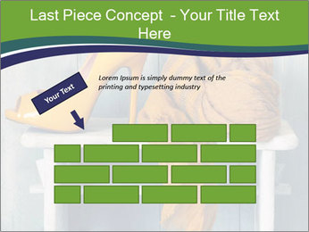 0000076999 PowerPoint Template - Slide 46