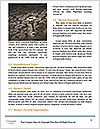 0000077011 Word Template - Page 4
