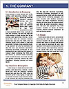 0000077014 Word Template - Page 3