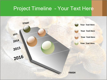 0000077020 PowerPoint Template - Slide 26