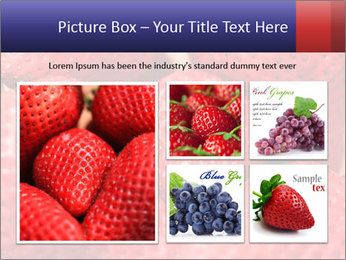 0000077027 PowerPoint Template - Slide 19
