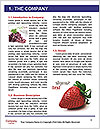 0000077027 Word Template - Page 3