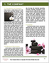 0000077029 Word Template - Page 3