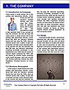 0000077033 Word Template - Page 3