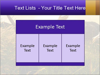 0000077037 PowerPoint Templates - Slide 59