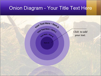 0000077037 PowerPoint Templates - Slide 61