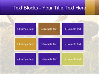 0000077037 PowerPoint Templates - Slide 68