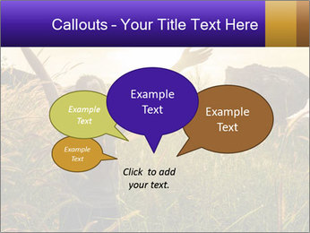 0000077037 PowerPoint Templates - Slide 73