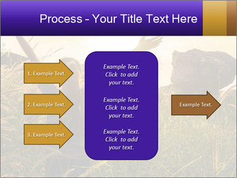 0000077037 PowerPoint Template - Slide 85