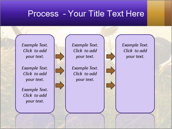 0000077037 PowerPoint Templates - Slide 86