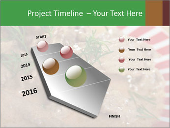 0000077044 PowerPoint Template - Slide 26