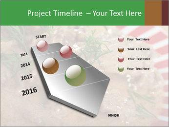 0000077044 PowerPoint Templates - Slide 26