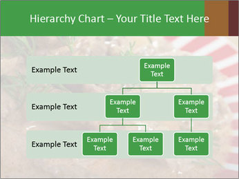0000077044 PowerPoint Templates - Slide 67