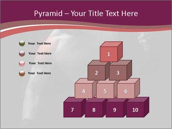0000077046 PowerPoint Template - Slide 31
