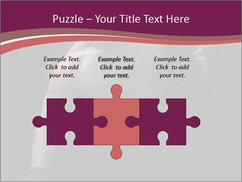 0000077046 PowerPoint Template - Slide 42