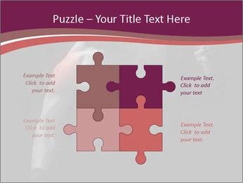 0000077046 PowerPoint Template - Slide 43