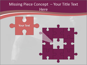 0000077046 PowerPoint Template - Slide 45