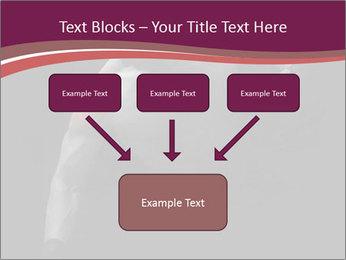 0000077046 PowerPoint Template - Slide 70