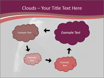 0000077046 PowerPoint Template - Slide 72