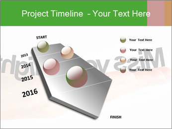 0000077047 PowerPoint Template - Slide 26