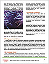 0000077048 Word Templates - Page 4
