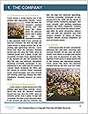 0000077051 Word Templates - Page 3