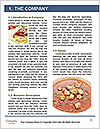 0000077055 Word Template - Page 3